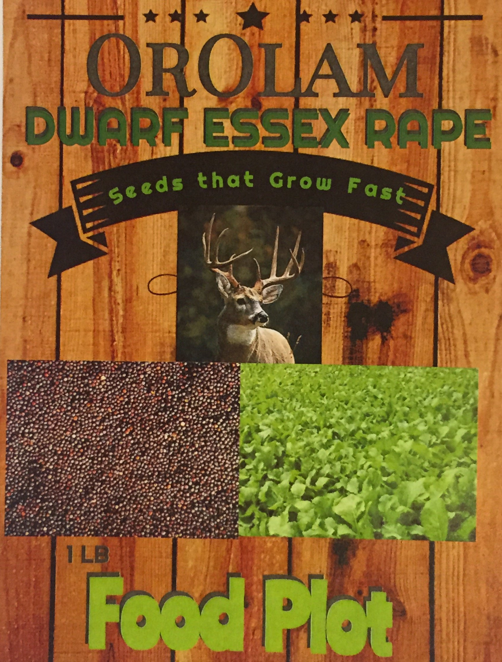 OrOlam King Shot Forage Food Plot Bulk Dwarf Essex Rape Seeds Whitetail Deer Goose Honey Bee''Seeds That Grow Fast'' 5 Lb by OrOlam