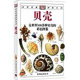 经典图鉴珍藏:《贝壳》(彩色)(新)