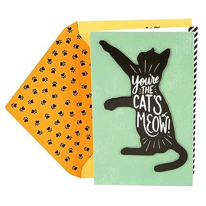 Amazon Hallmark Birthday Greeting Card From The Cat Cats