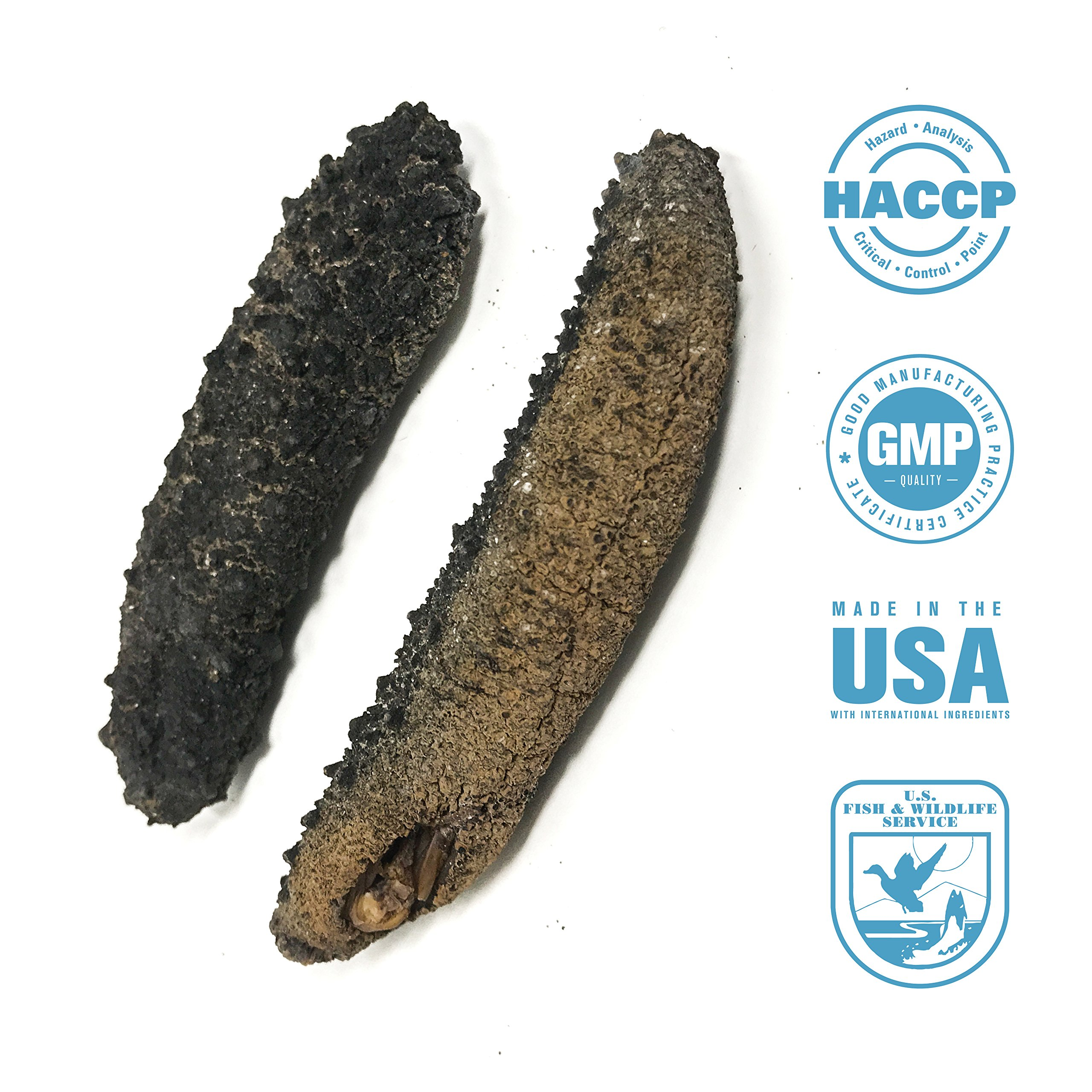 SEABENEFIT Royal Black - Wild Caught Sea Cucumber Dried All Natural Nutritious - 8 oz.
