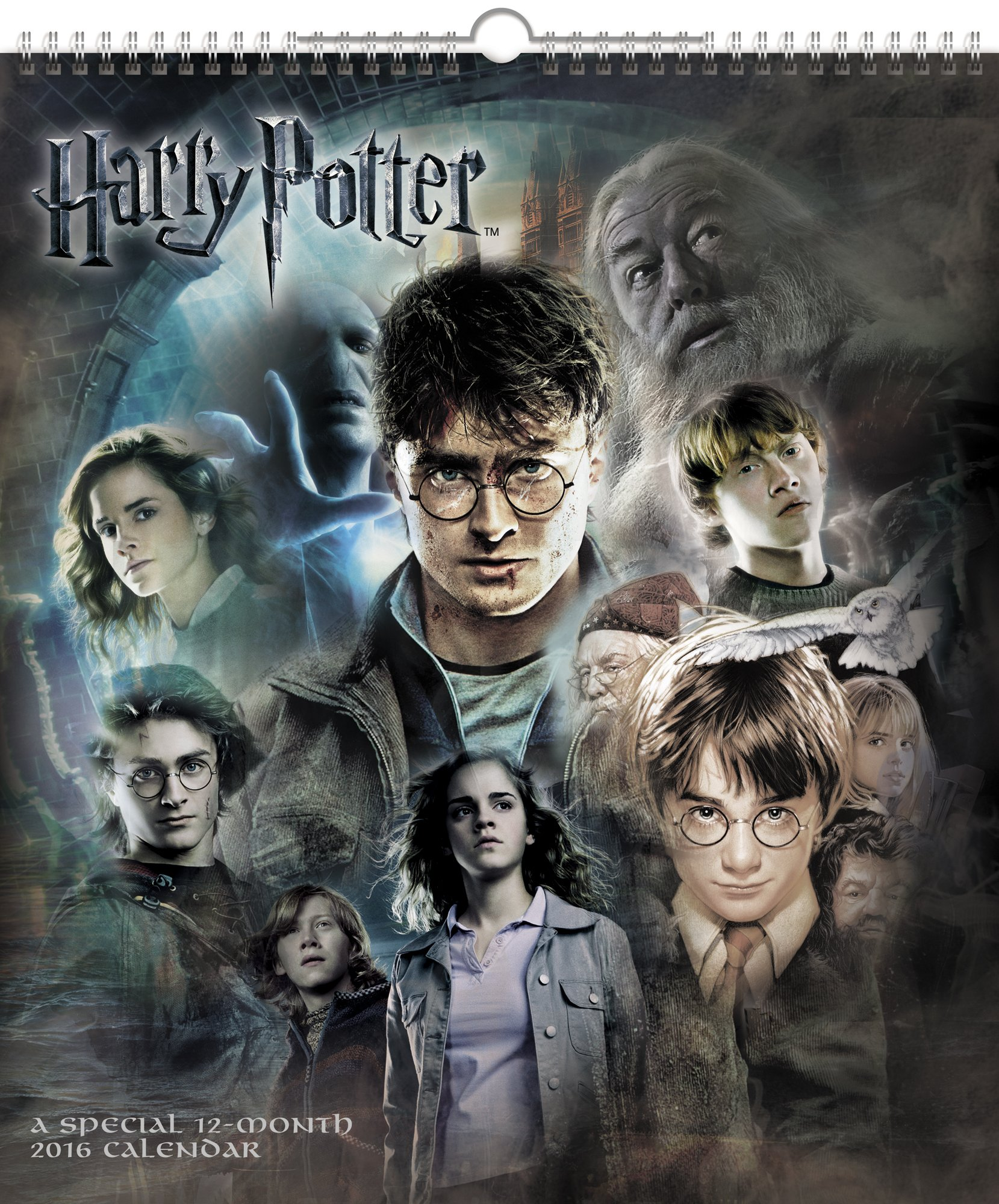 Harry Potter Poster Wall Calendar product image