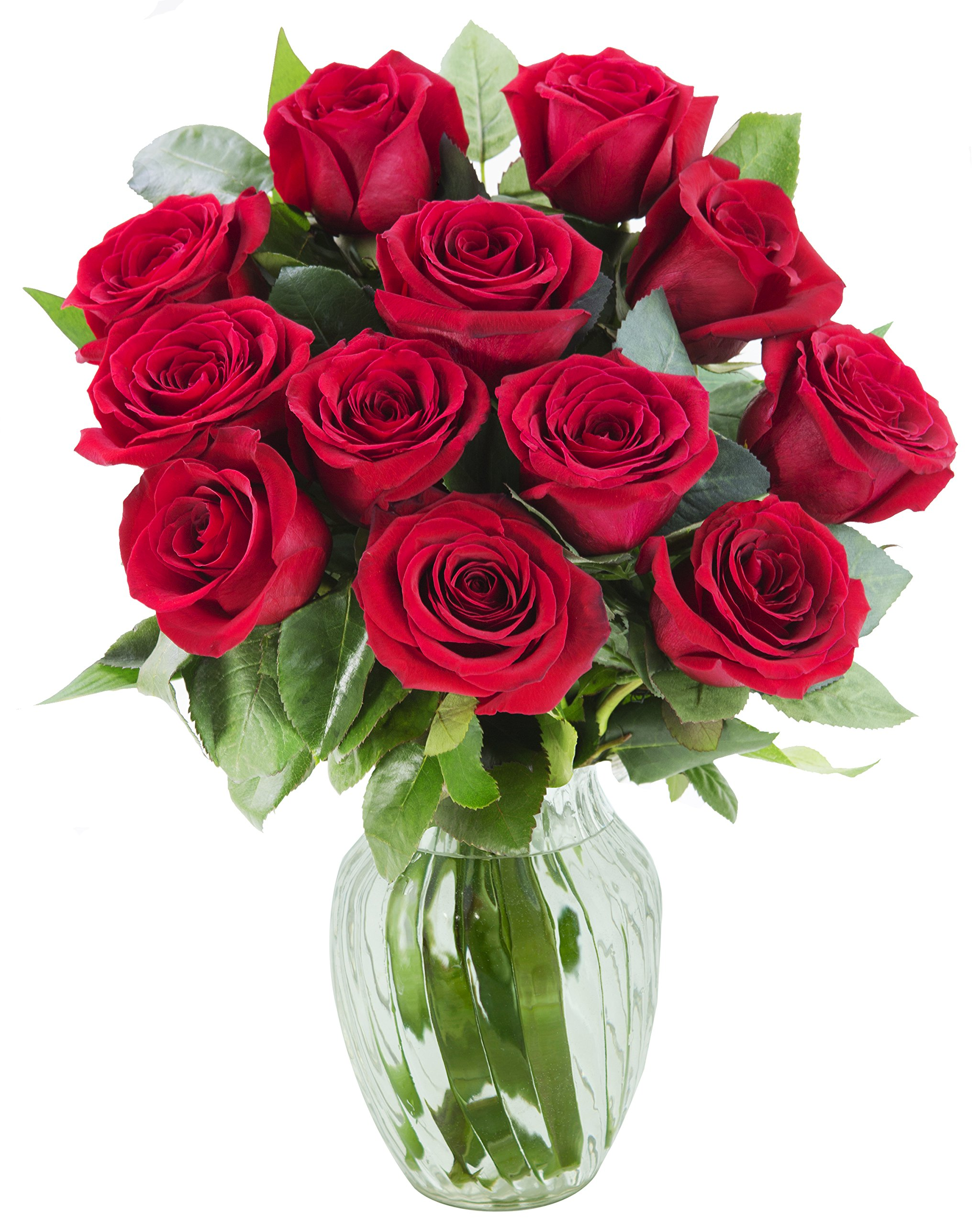 KaBloom The Romantic Classic Bouquet of 12 Fresh Red Roses (Farm-Fresh, Long-Stem) with Vase