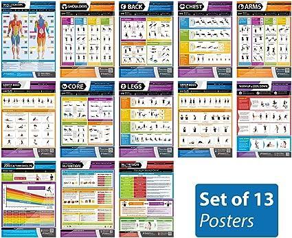 Amazon.com: Gimnasio carteles – Conjunto de 13 (Tamaño ...