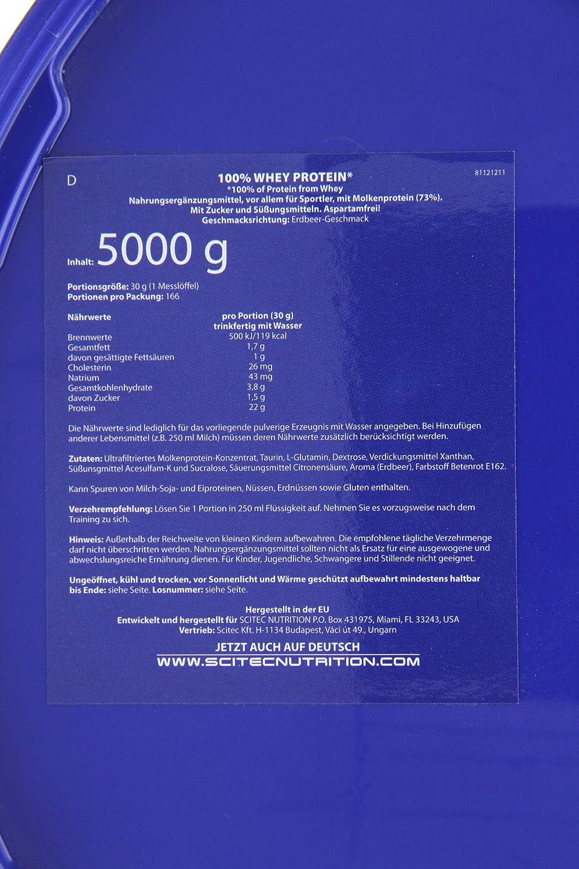 Scitec Nutrition Whey Protein proteína fresa 5000 g: Amazon.es: Salud y cuidado personal