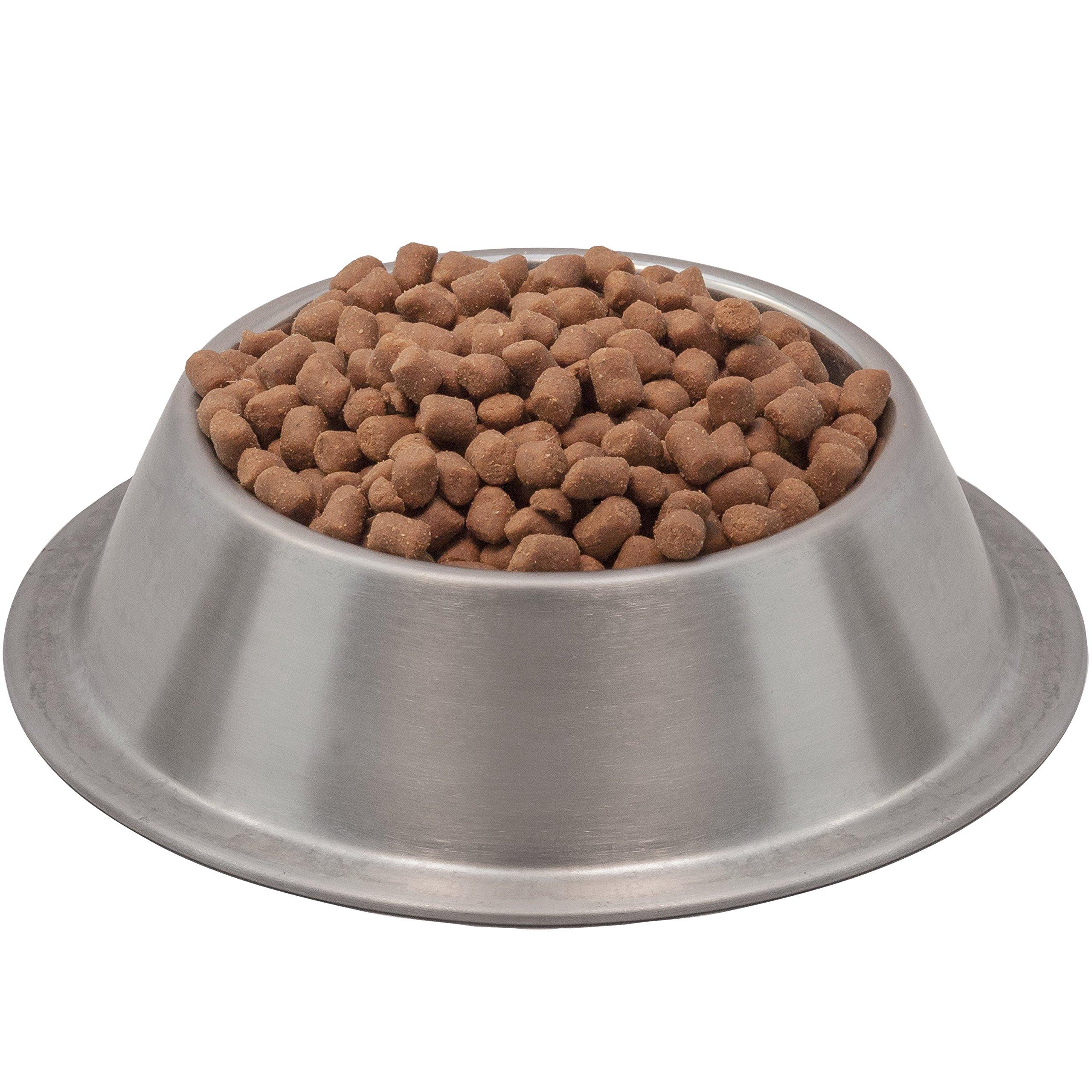 Wysong Ferret Epigen 90 - Dry Ferret Food by Wysong