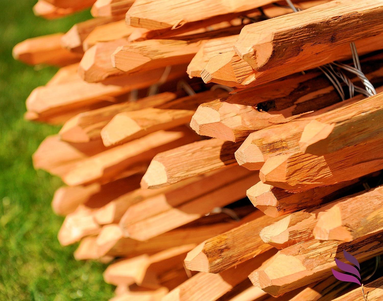 Floranica Imprägnierter Staketenzaun in 14 Größen mit gut