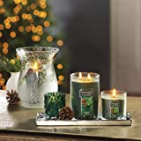 YANKEE CANDLE Small Tumbler Jar Balsam/Cedar