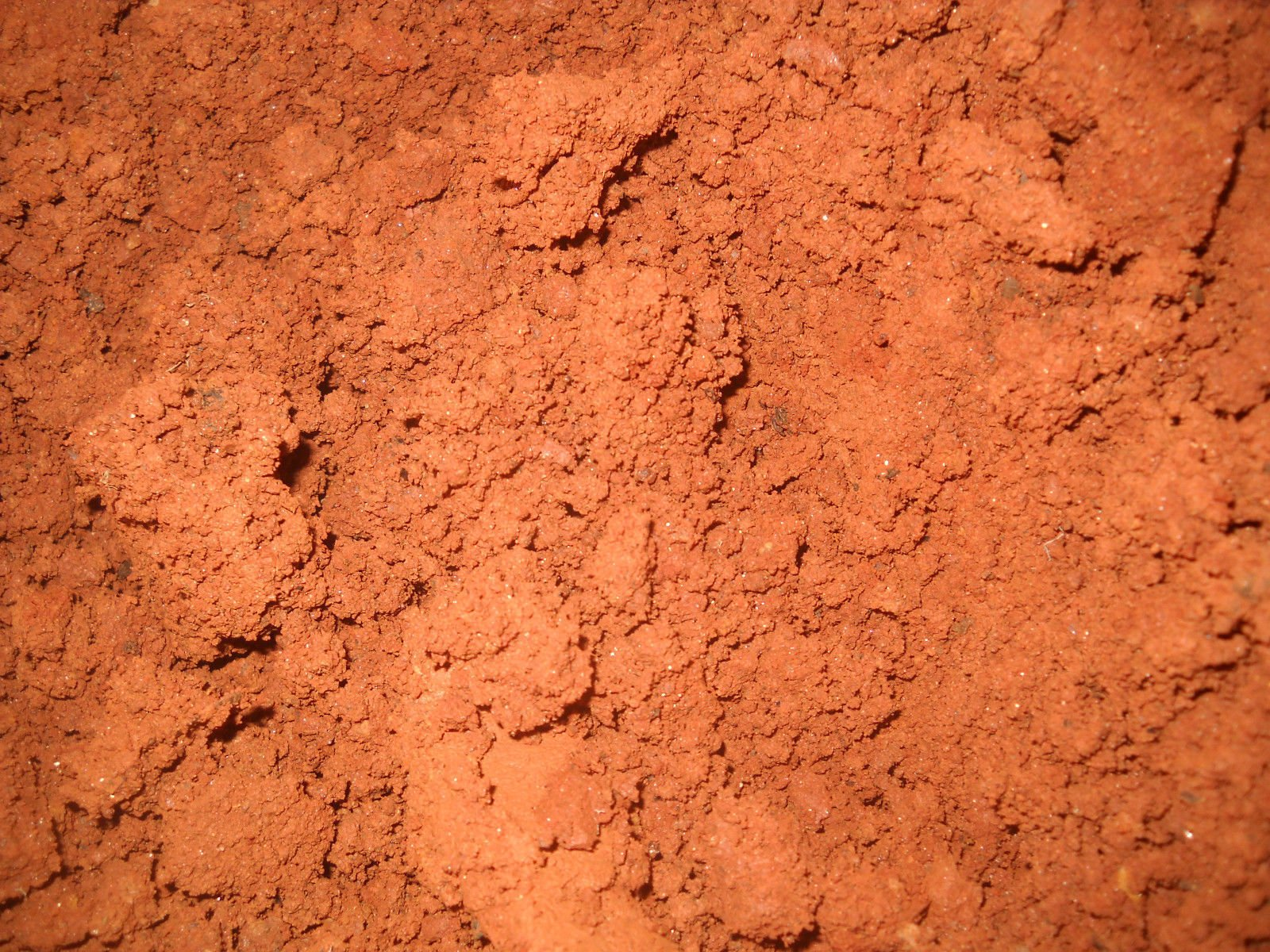 RED Soil Dirt Clay Georgia - 3 POUNDS from HANNIBALS DINER
