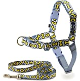 PetSafe Easy Walk Chic Harness