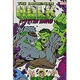 Incredible Hulk by Peter David Omnibus Vol. 2