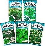 日本農産種苗 ハーブのタネセット 901149 5入
