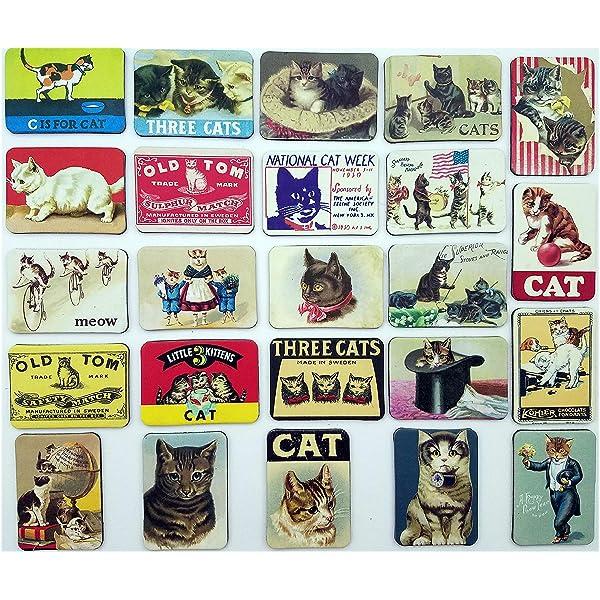 Colourful Metal fridge magnet Sign, Black CAT ...