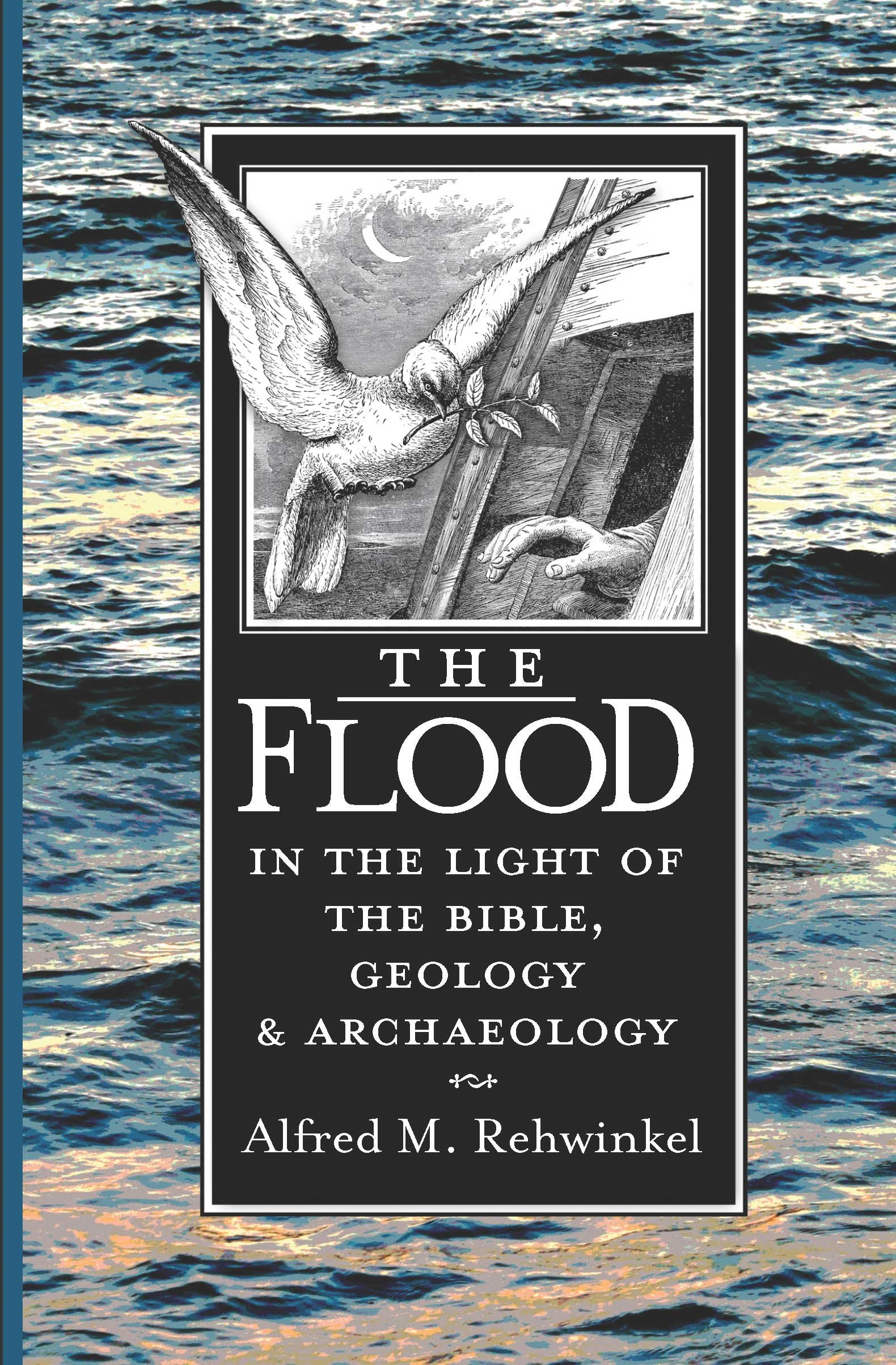 Amazon: The Flood: In The Light Of The Bible, Geology, And Archaeology  (9780570031833): Alfred Rehwinkel: Books