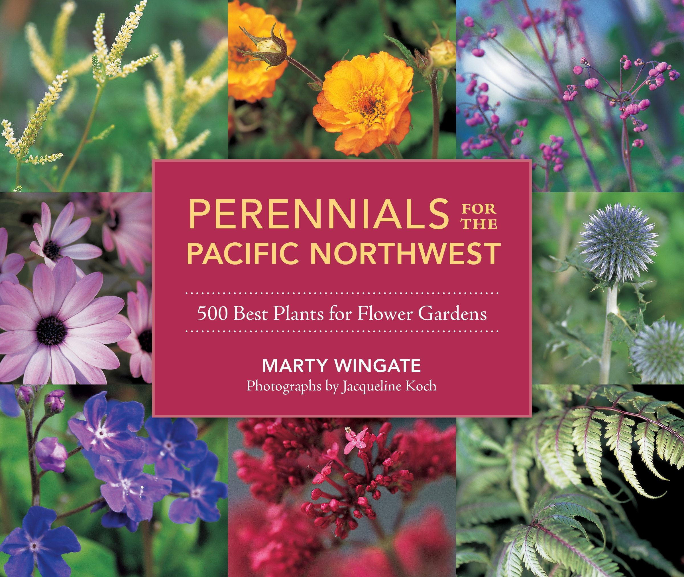 Perennials For The Pacific Northwest 500 Best Plants For Flower