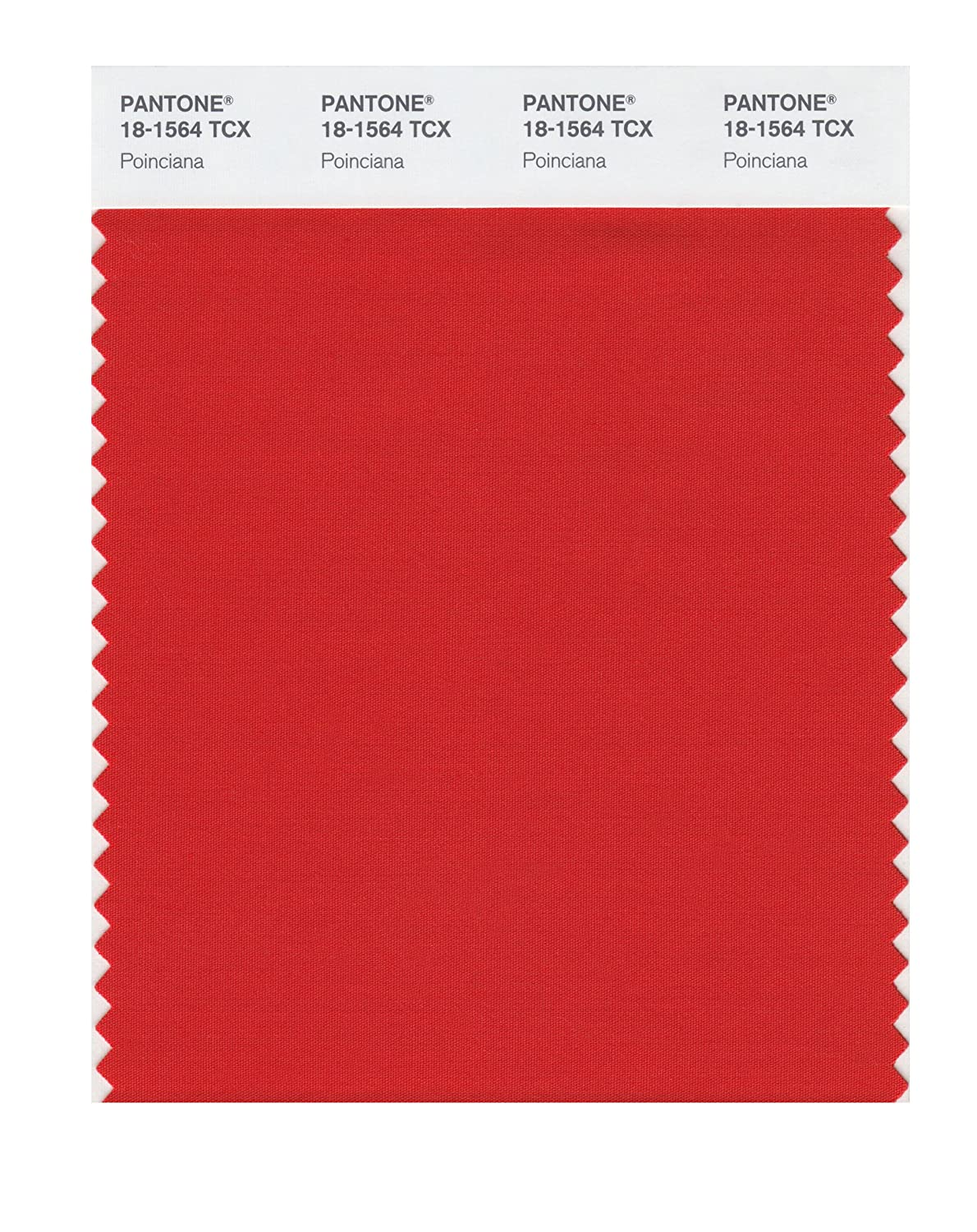 Pantone 18 1345 Tcx Smart Color Swatch Card Cinnamon Stick House