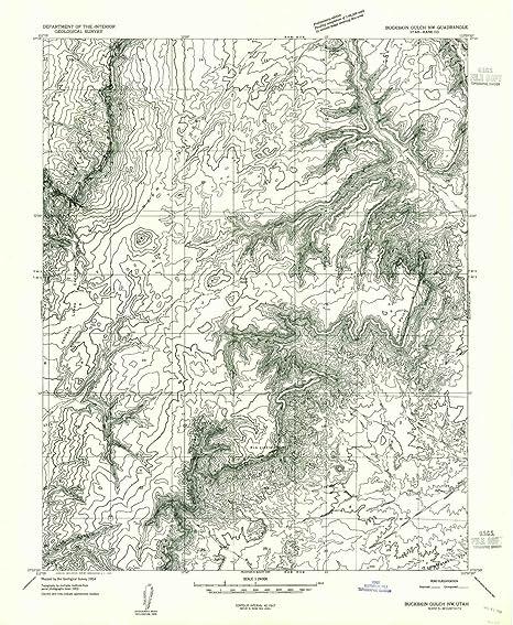 Amazon.com: YellowMaps Buckskin Gulch NW UT topo map, 1 ...