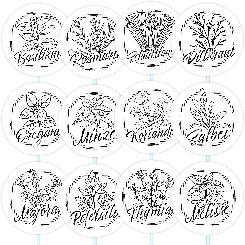 Kr/äuterspirale /Ø 8cm Kreis rund einfacher Zusammenbau 12 schwarze Kr/äuterschilder wetterfest f/ür deinen Garten aus Kunststoff mit transparenten Acrylglasst/äben Gartenschilder Pflanzenstecker