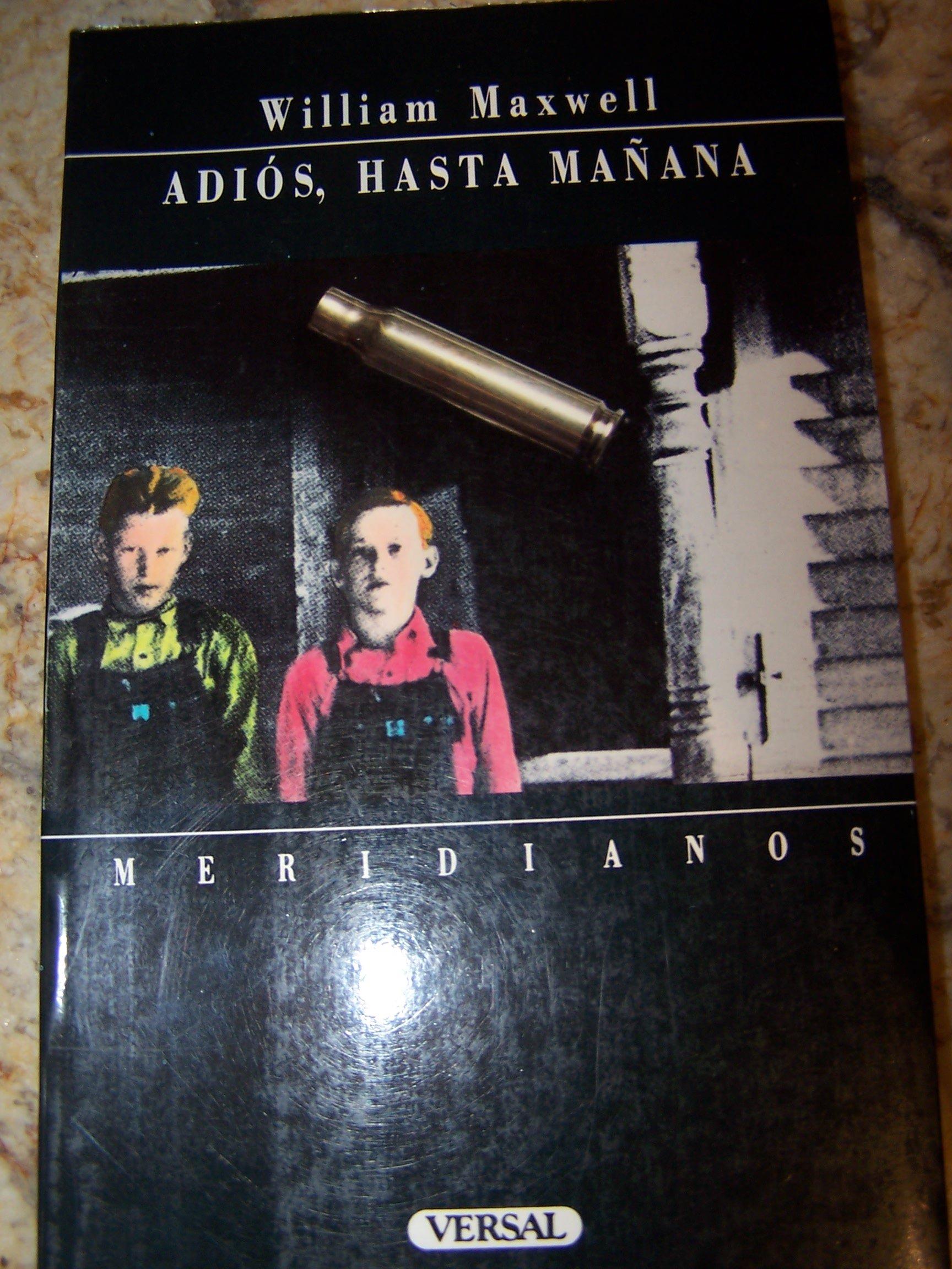 ADIOS HASTA MAÑANA ebook