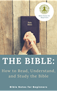 Bible study guide for beginners the bible study book 1 kindle the bible how to read understand and study the bible fandeluxe Gallery
