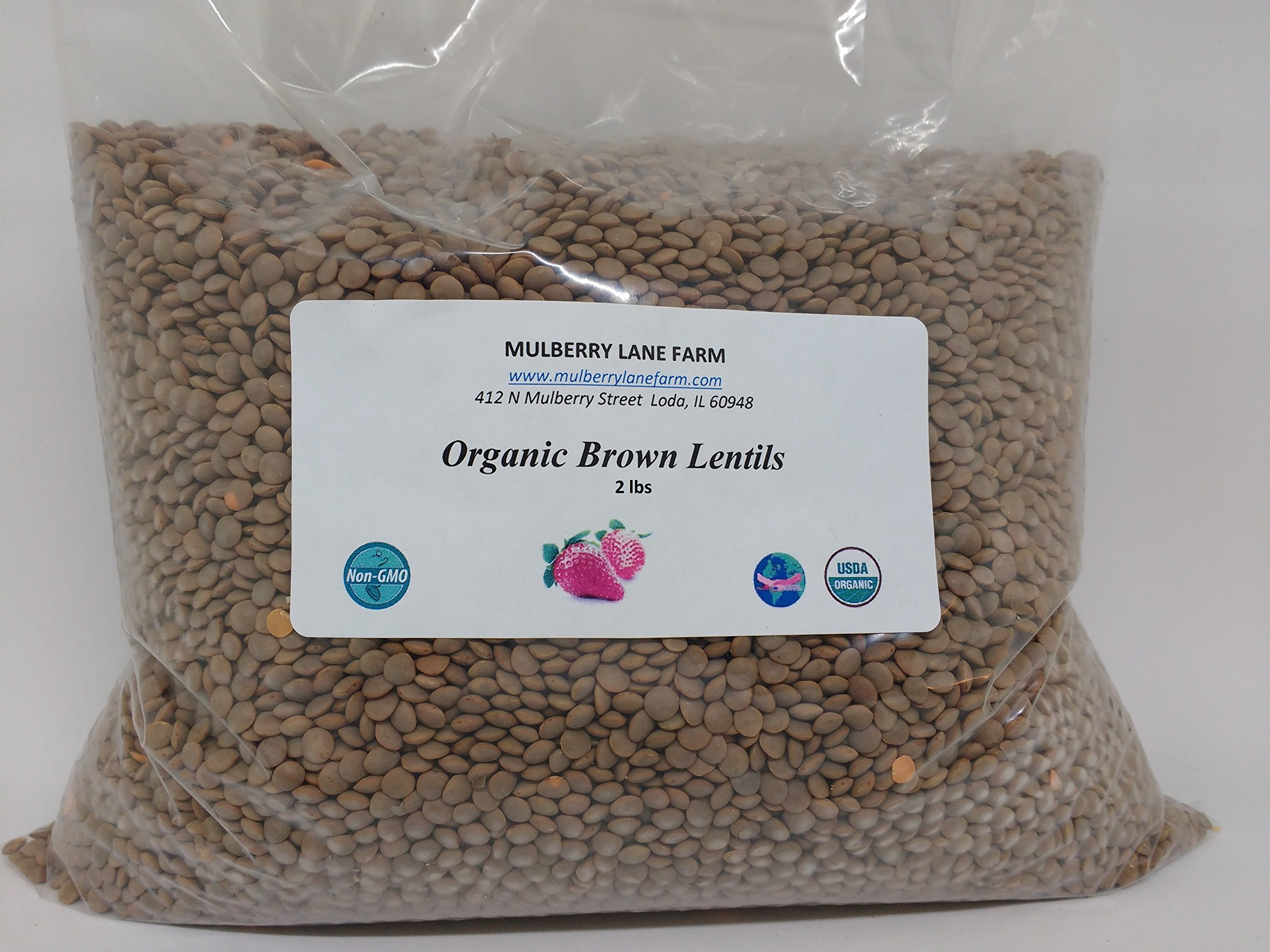 Brown Lentils, 2 lbs (two pounds) USDA Certified Organic, Non-GMO, BULK by Mulberry Lane Farms