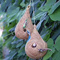 Haastika Handcraft coircraft Bird nest Pack of 2