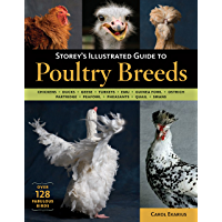 Storey's Illustrated Guide to Poultry Breeds: Chickens, Ducks, Geese, Turkeys, Emus, Guinea Fowl, Ostriches, Partridges…