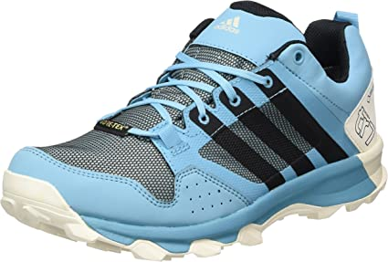 Fructífero Arbitraje Cocinando  Adidas Kanadia 7 TR Gore-TEX Women's Trail Running Shoes - AW17-10.5: Amazon.ca:  Sports & Outdoors