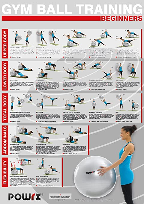 Gym Ball Exercise Yoga Workout Level 1 A Total Body