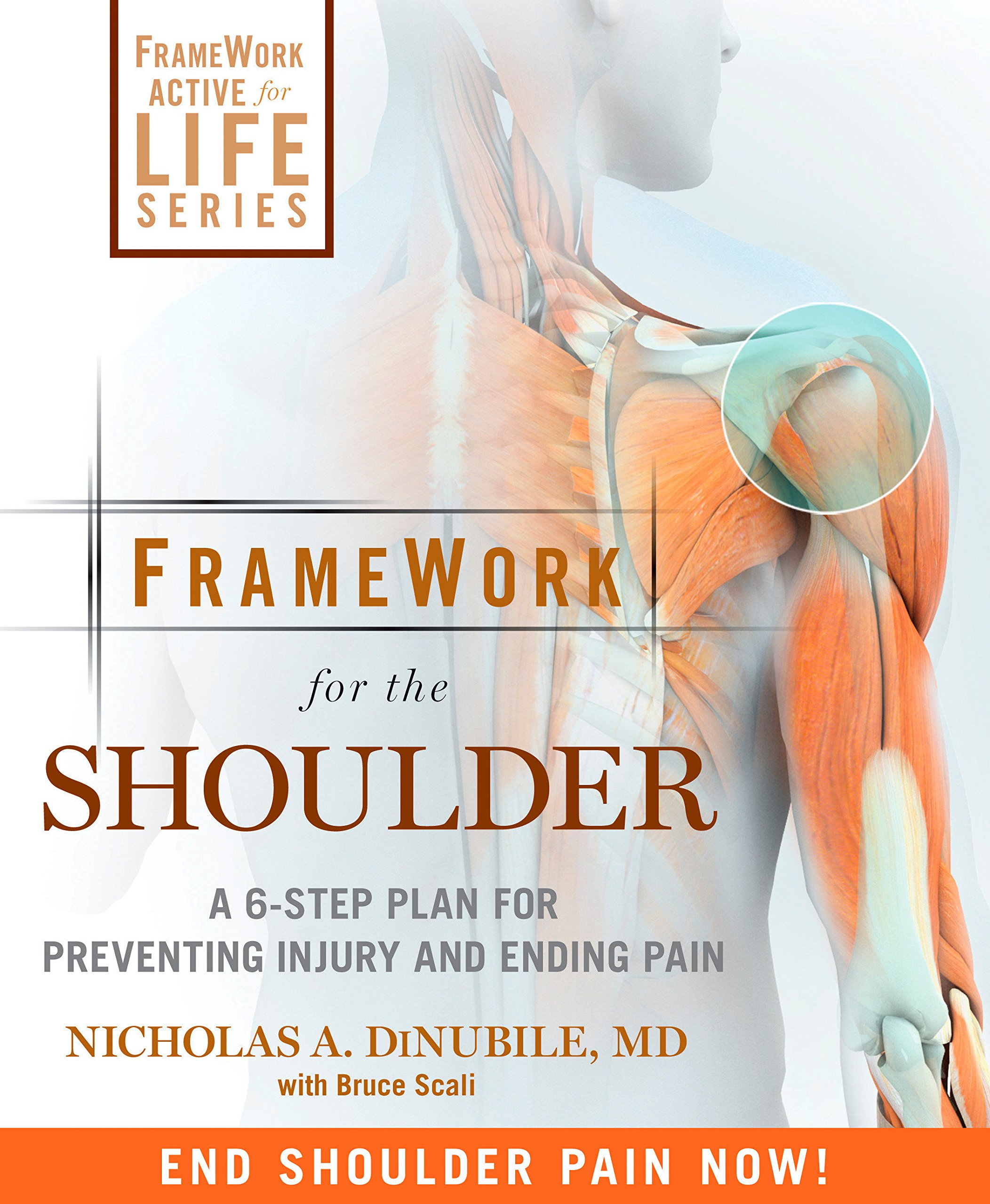 Read Online FrameWork for the Shoulder: A 6-Step Plan for Preventing Injury and Ending Pain pdf