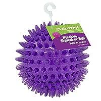 Deals on Gnawsome Medium Squeaker Ball Dog Toy