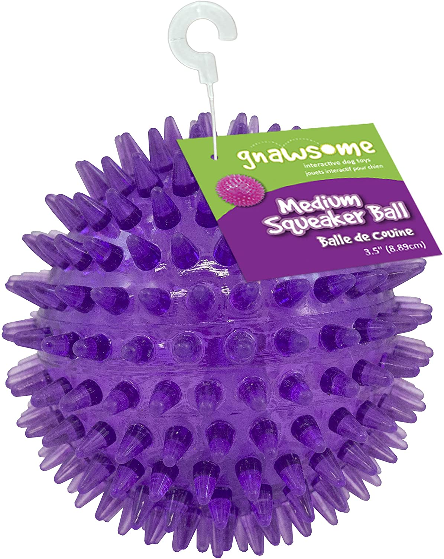 Gnawsome Medium Squeaker Ball Dog Toy, Medium 3.5