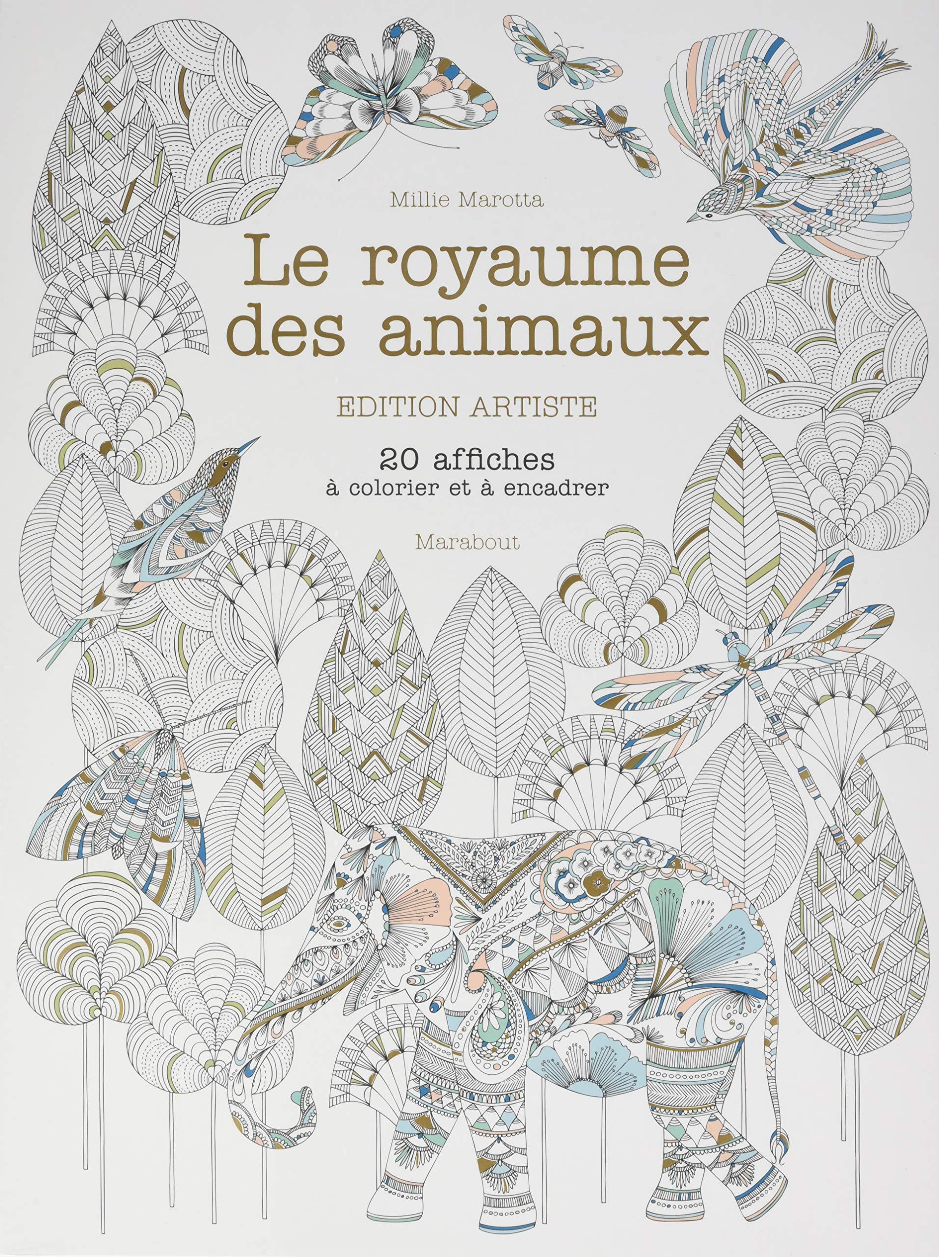 Amazonfr Le Royaume Des Animaux Edition Artiste