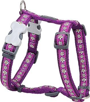 Red Dingo Desinger arnés del perro, cadena de margaritas morado (15 mm x cuello: 30 - 48 cm/Cuerpo 36 - 54 cm) S: Amazon.es: Productos para mascotas