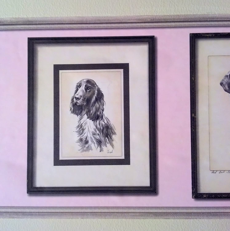 Beagle, Spaniel, Boston Terrier de perros cenefa de papel pintado ...