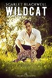 Wildcat: Edizione italiana