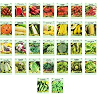 Set of 30 Vegetable and Herb Seeds - Semi Assorted - 100% Non-GMO & Heirloom - Great for Starting a Garden! High…