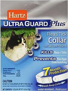 Hartz UltraGuard Plus Flea And Tick Kitten And Cat Collar (Pack of 2)