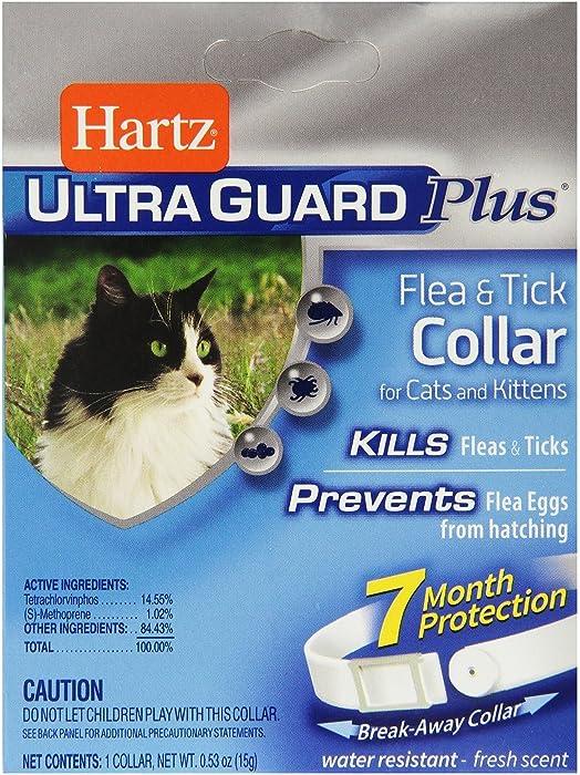 The Best Hartz Cat Food Pouches