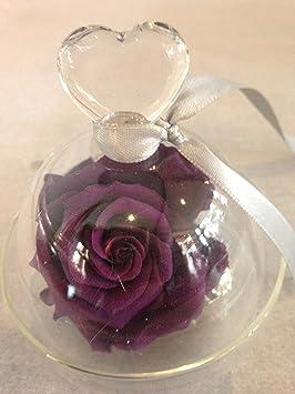 Rose Eternelle Violette Stabilisee Sous Cloche Amazon Fr Jardin