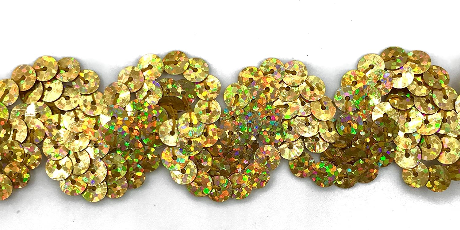 "12 Yards TRIMPLACE Gold Spotlight 1 Inch Sequin /""S/"" Trim"