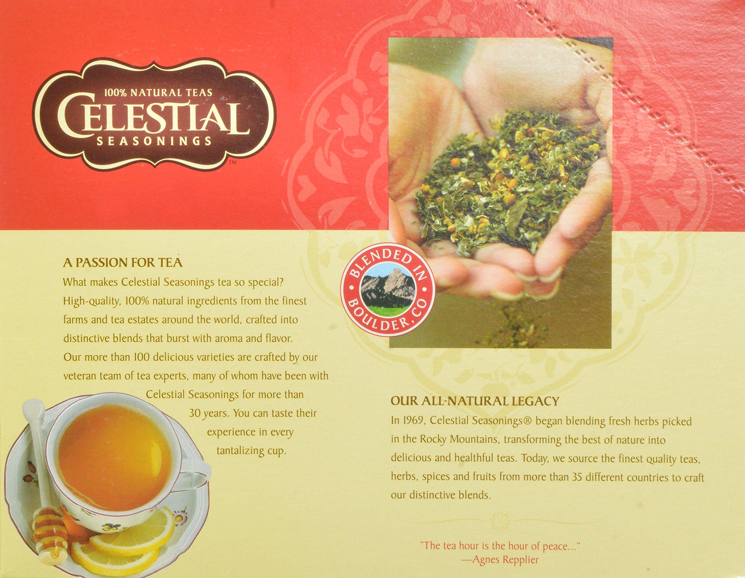 Celestial Seasonings Green Tea K-Cups, Authentic, 96-Count by Celestial Seasonings (Image #5)