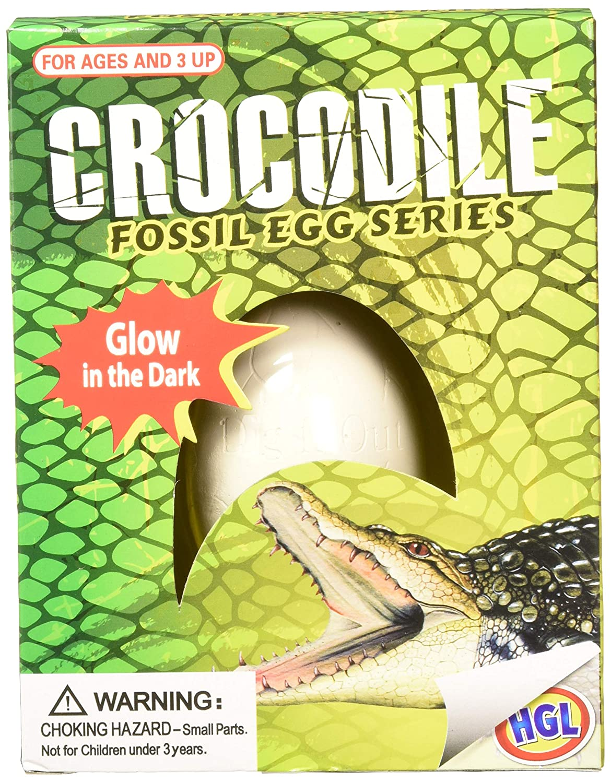 Pocket Money Crocodile Fossil Egg