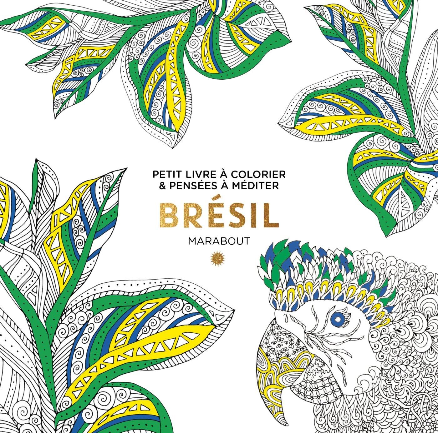 Le Petit Livre De Coloriage Brésil Amazonfr Marabout Livres