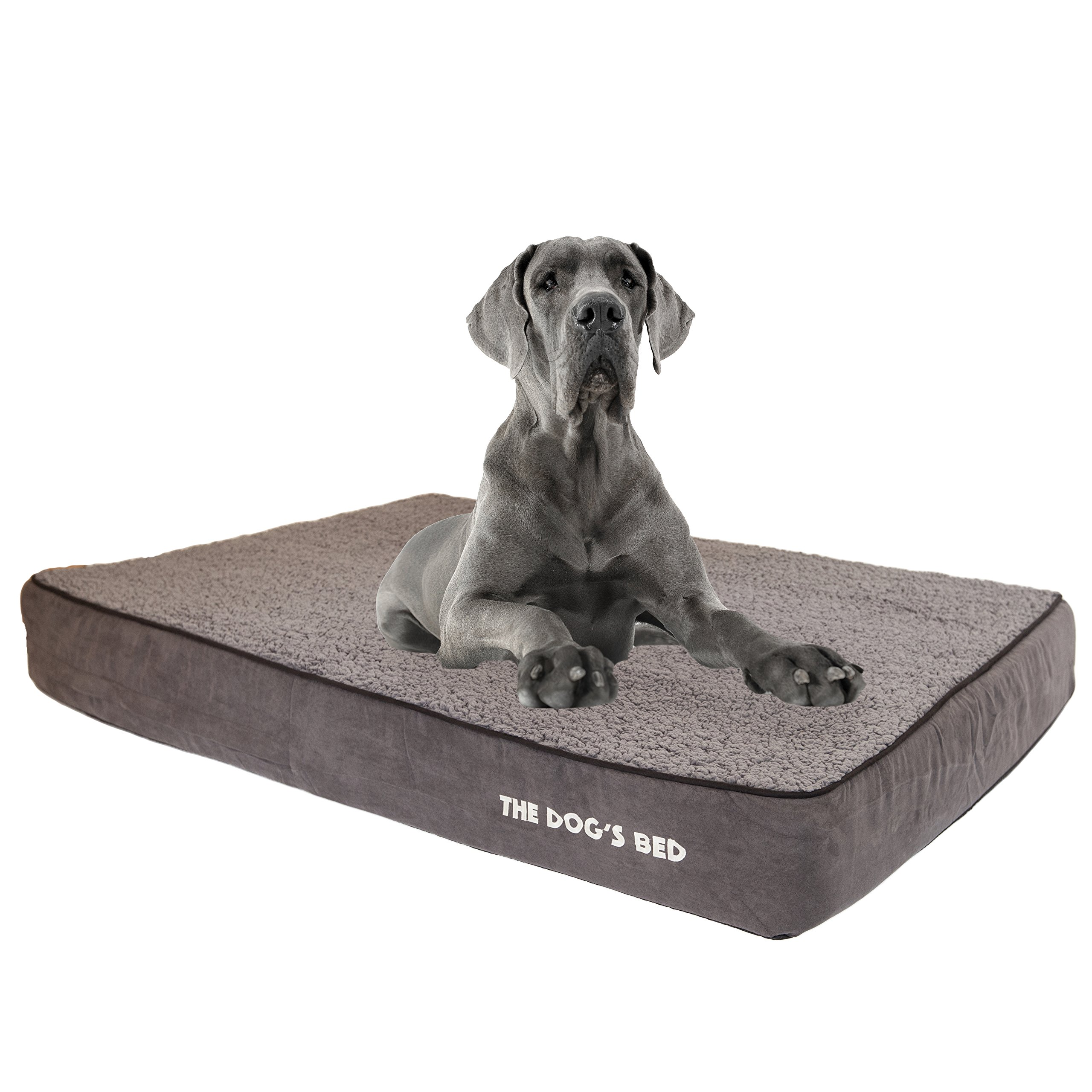 simmons product foam shipping orthopedic dog thera on beautyrest orders overstock bed supplies memory pet over free