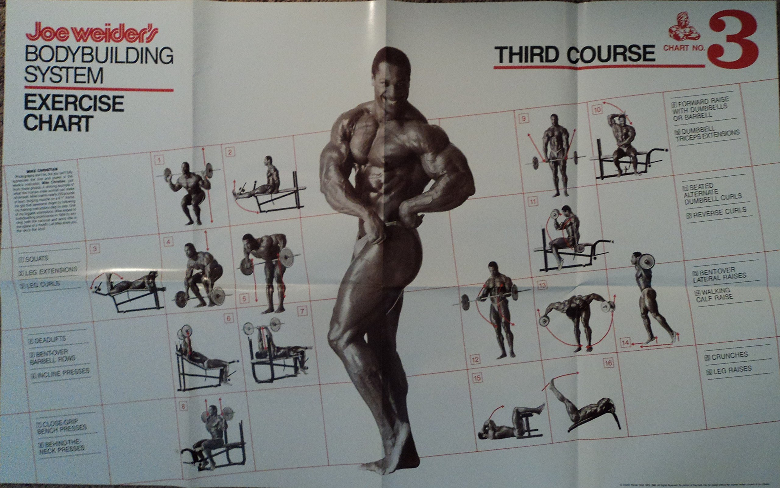 PDF The Bodybuilding Com Guide To Your Best Body Free ...