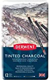 Derwent Tinted Charcoal Drawing Pencils, Set of 12, Watersoluble, Professional Quality, 2301690