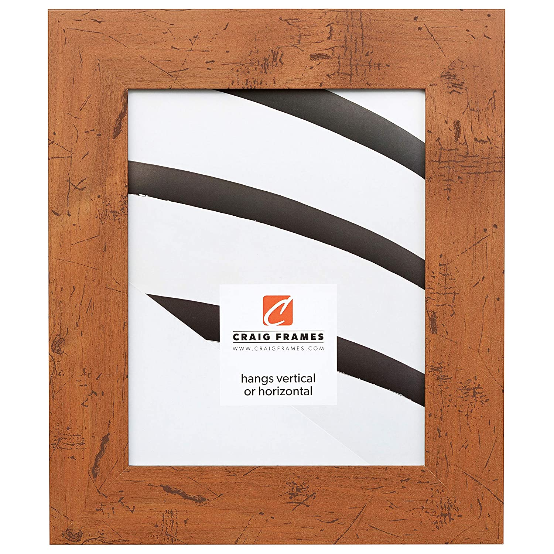 Craig Frames Bauhaus 200, Modern Rustic Light Walnut Picture Frame, 4 by 6-Inch Craig Frames Inc. 20277587