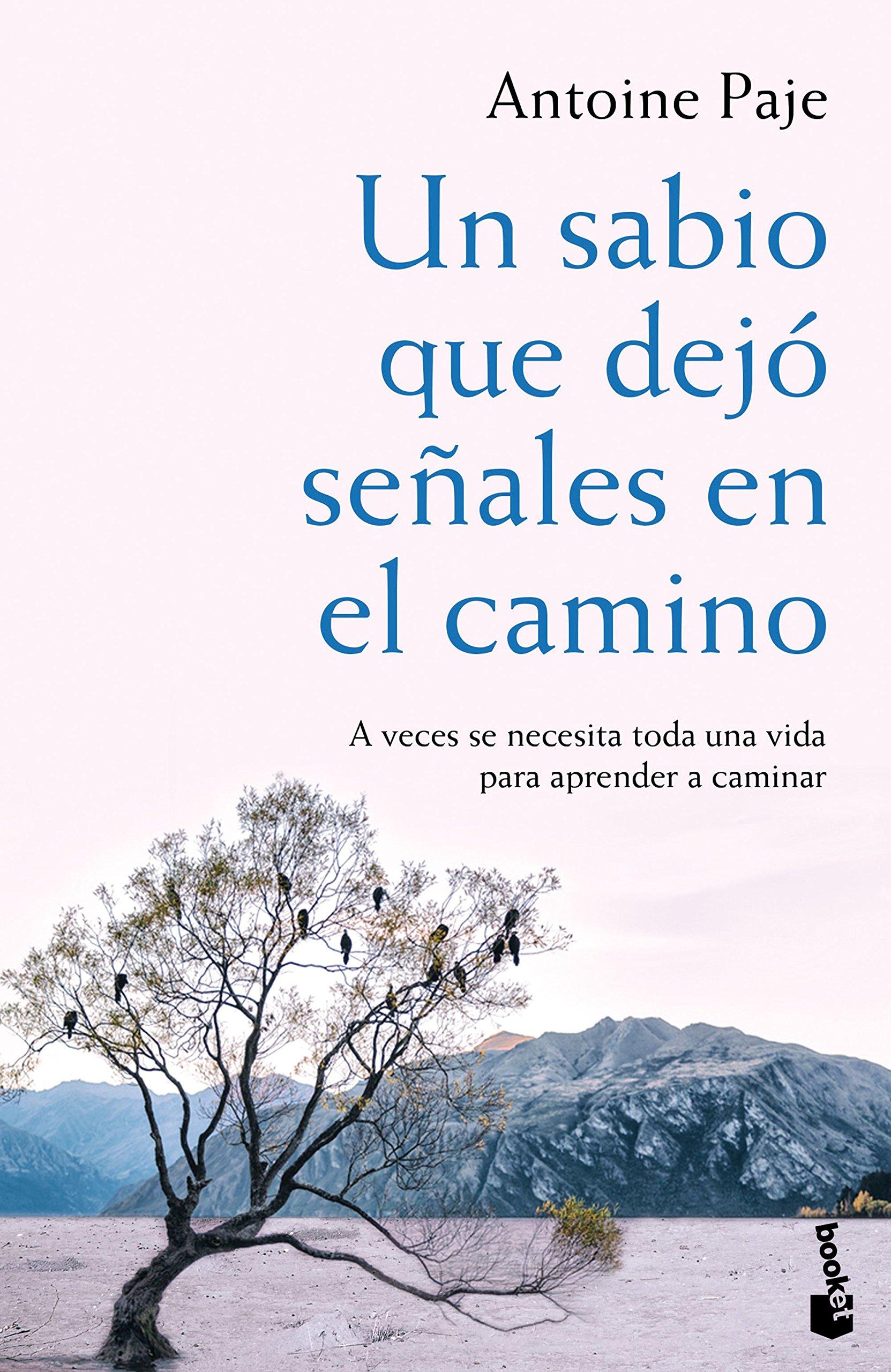 Un Sabio Que Dejo Senales En El Camino Nf Novela Spanish Edition Paje Antoine Onate Tudela Alejandra 9788408166382 Amazon Com Books