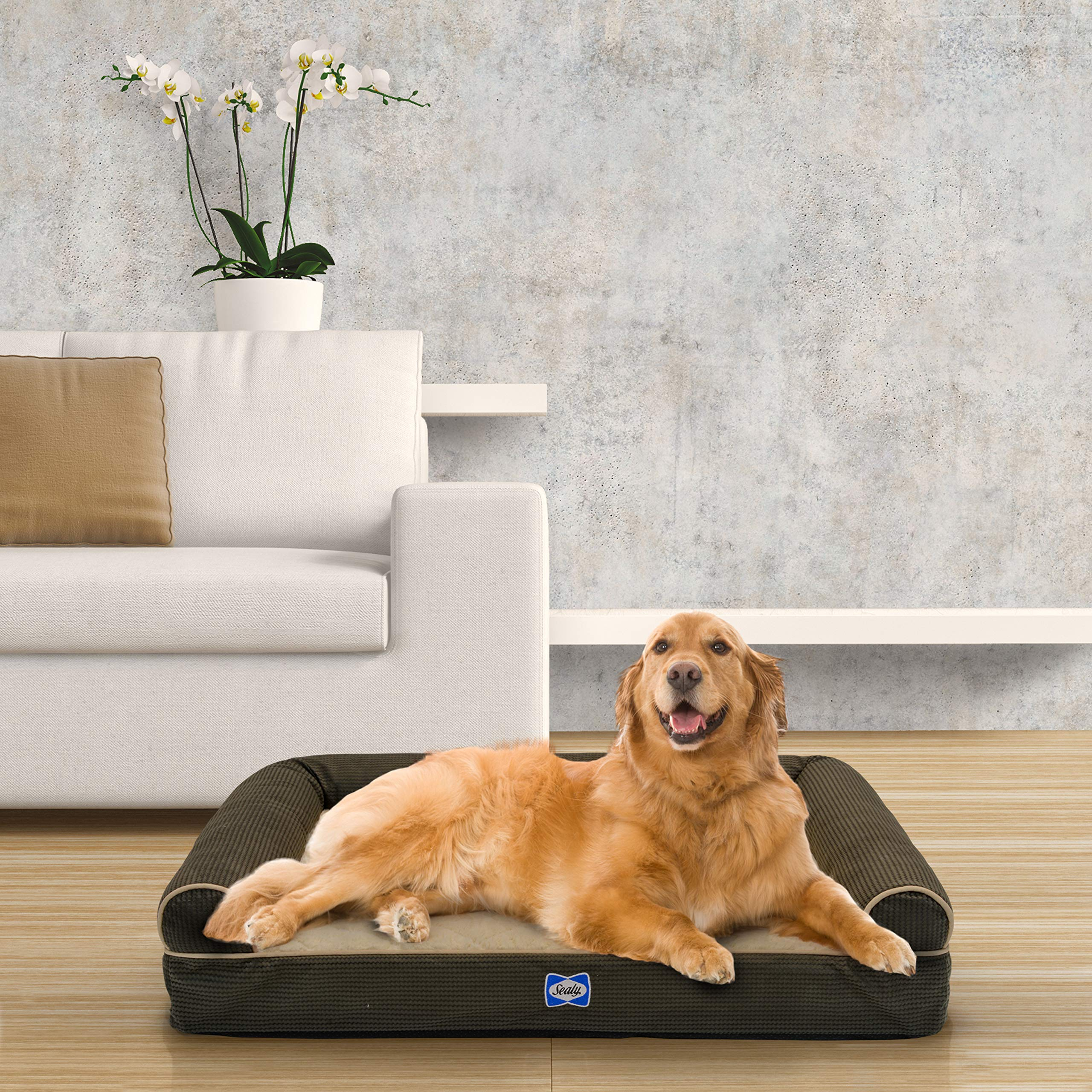Sealy Ultra Plush Sofa-Style Bolster Dog Bed Brown, Large - Orthopedic Foam Pet Bed with Machine Washable Plush Cover by Sealy Dog Bed