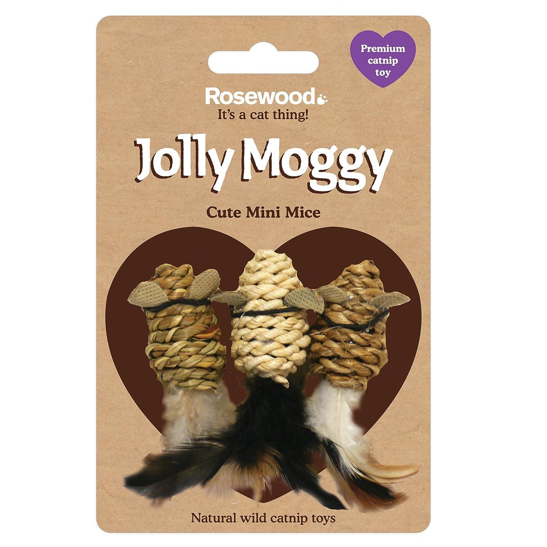 Juguete para Gatos Jolly Moggy con Hierba gatera Rosewood